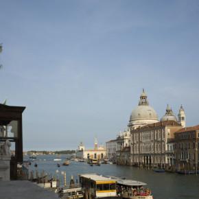 Le Istituzioni che collaborano con Suoni D'Arpa: Musica a Palazzo
