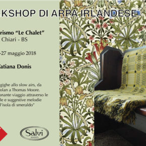 workshop di arpa irlandese