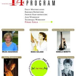 HarpMaster Academy Program