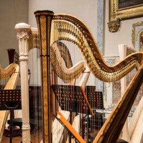 Awards: 10th International Harp Contest in Italy Suoni D'Arpa